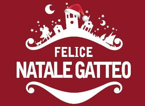 FELICE GATTO NATALE