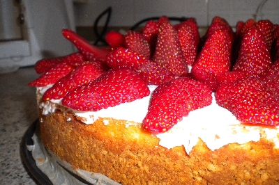 New York Cheese Cake con Fragole