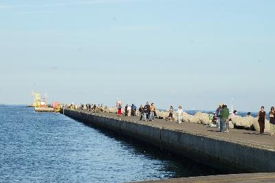 Palizzata (Molo di Marina di Ravenna)