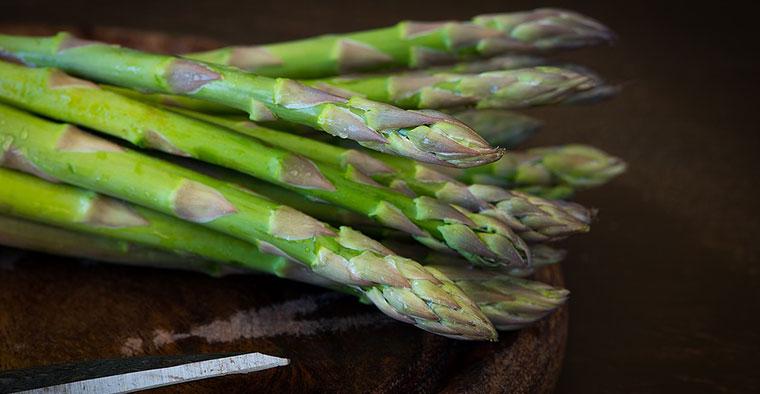 La sagra dell'asparago selvatico